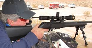 Best Scopes for .17 HMR