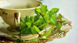 peppermint tea to ease indigestion