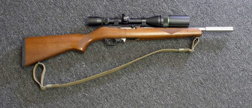 best scope for the ruger 10/22